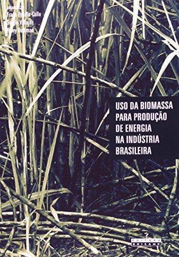 Uso da biomassa para produção de energia na indústria brasileira, livro de Frank Rosillo-Calle, Sergio V. Bajay, Harry Rothman
