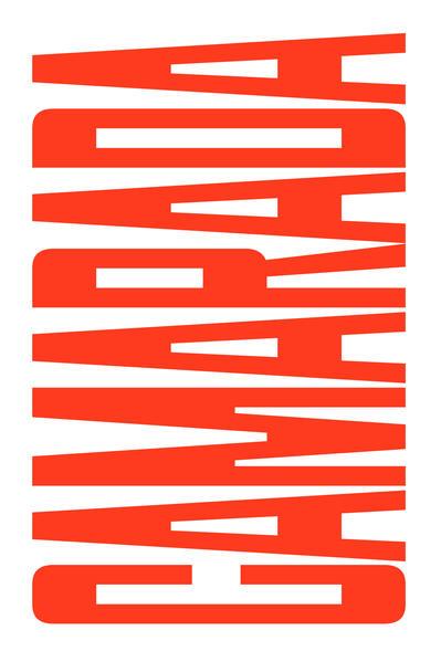 Camarada. Um ensaio sobre pertencimento político, livro de Jodi Dean