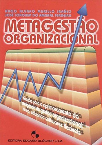 Metagestão organizacional, livro de Ibañez