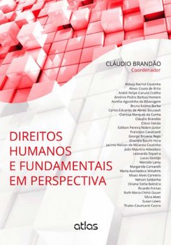 Direitos humanos e fundamentais em perspectiva, livro de Cláudio Brandão