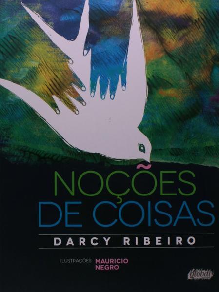 Noções de Coisas, livro de Darcy Ribeiro.