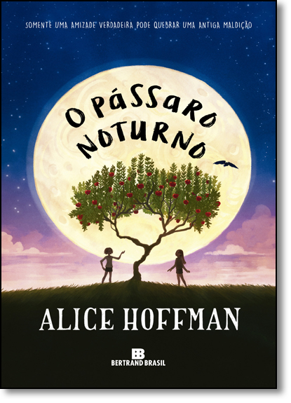 Pássaro Noturno, O, livro de Alice Hoffman
