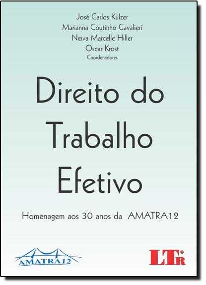 Direito do Trabalho Efetivo: Homenagem aos 30 Anos da Amatra 12, livro de Lier Pires Ferreira