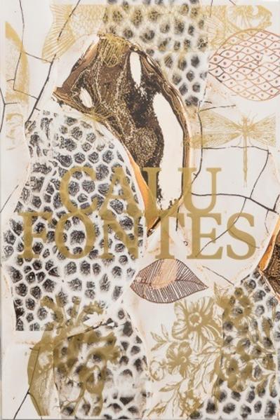 Calu Fontes. Camadas, contornos e relevos, livro de Calu Fontes