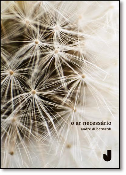 Ar Necessário, O, livro de André di Bernardi