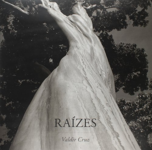 Raízes, livro de Valdir Cruz