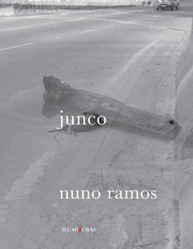 Junco, livro de Nuno Ramos