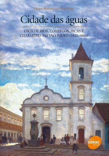 Cidade Das Águas, livro de Denise Sant