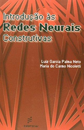 Introducao As Redes Neurais Construtivas, livro de Luiz Garcia Palmas Neto