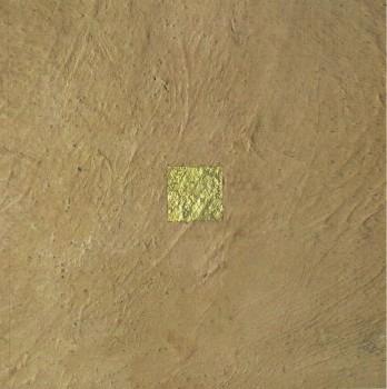Um quadrado no Rio Grande do Sul, livro de Nick Rands, João Ricardo Xavier