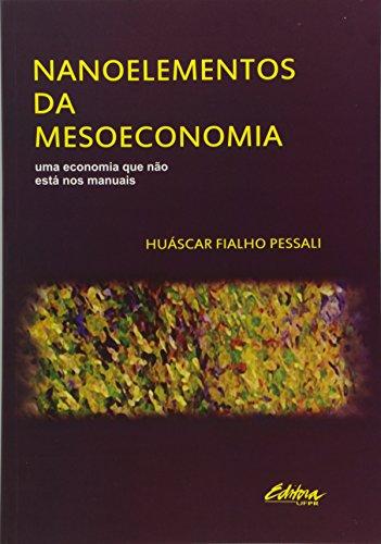Nanoelementos da mesoeconomia. Uma economia que não está nos manuais, livro de Huáscar Fialho Pessali