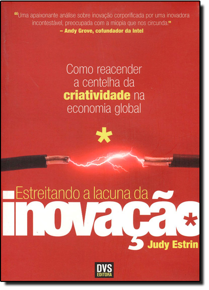 Estreitando a Lacuna da Inovação, livro de Judy Estrin