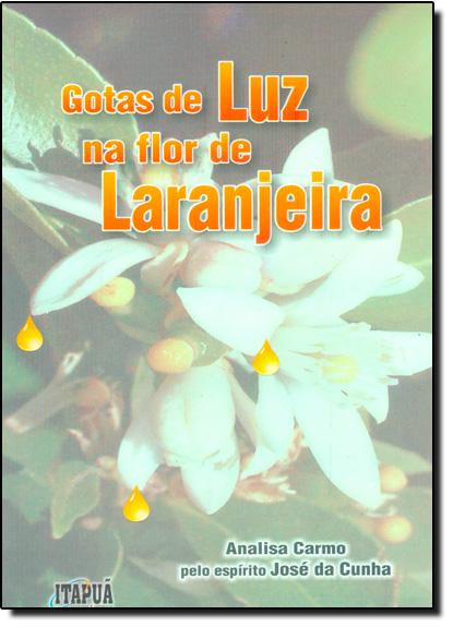 Gotas de Luz na Flor de Laranjeira, livro de Analisa Carmo